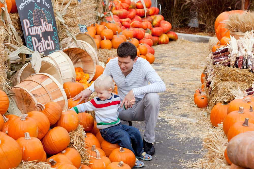 Father and child picking out a pumpkin at a farm stand