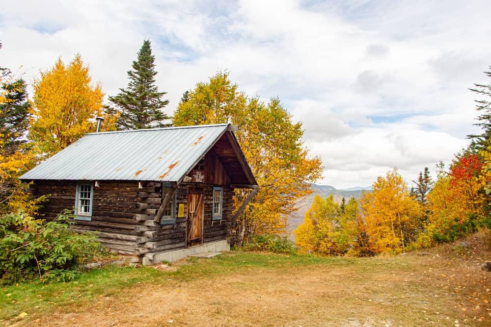 Brown log cabin around fall foliage