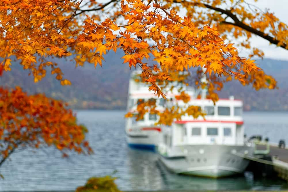 Ships in the water with fall foliage