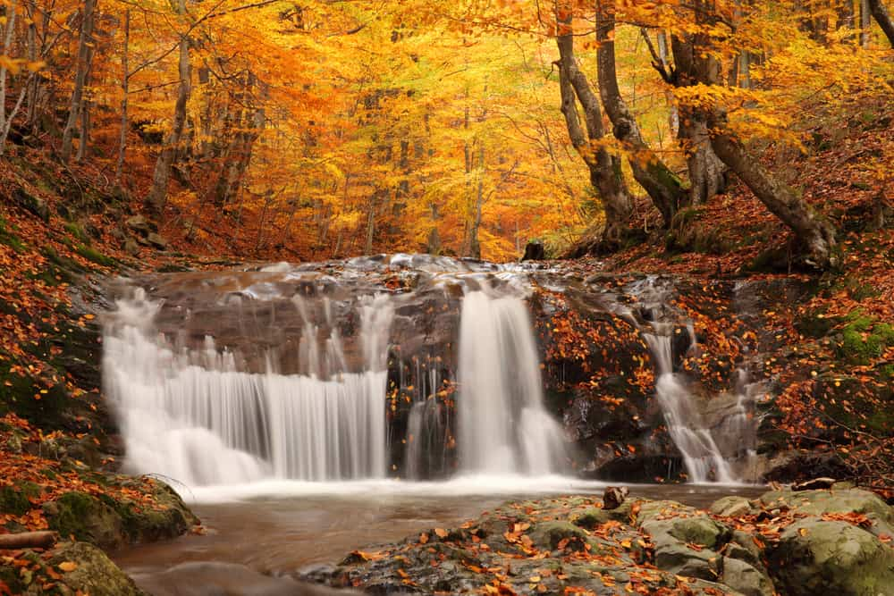 Waterfall rushing in a forest in the fall